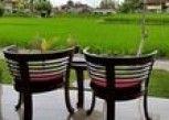 Pesan Kamar Suite di Sri Bungalows Ubud