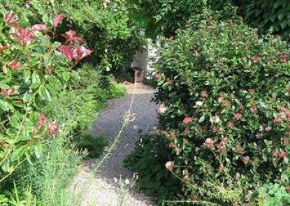 Steps Farmhouse - Guest house Teras