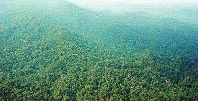 Taman Nasional Bukit Dua Belas