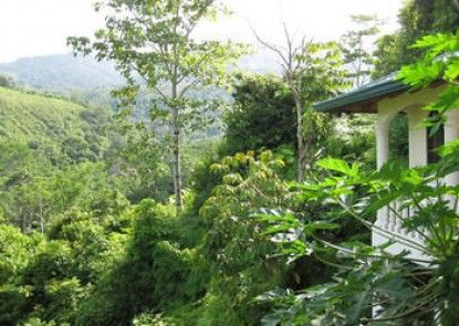 The Mango Tree Villas & Spa