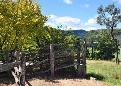 The Laurels B&B Kangaroo Valley