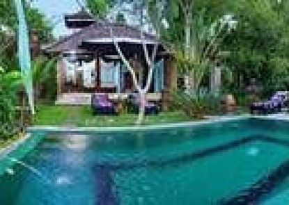 The Mahogany Villa Teras