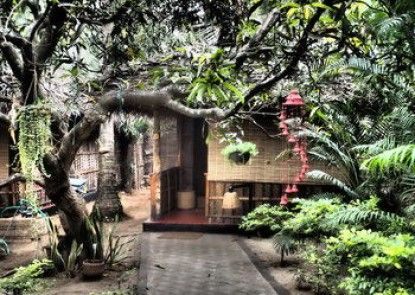 The Palm Trees Resort