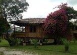 Pesan Kamar Vila Standar (orchard) di The Roots Eco Resort