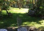 Pesan Kamar Suite, Pemandangan Kebun di The Willows