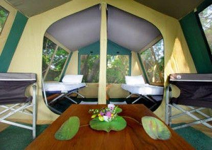 The Yala Camping