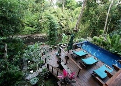 Tree Tops Villa Teras