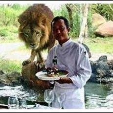 Tsavo Lion African Resto