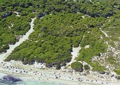 Valentín Playa de Muro