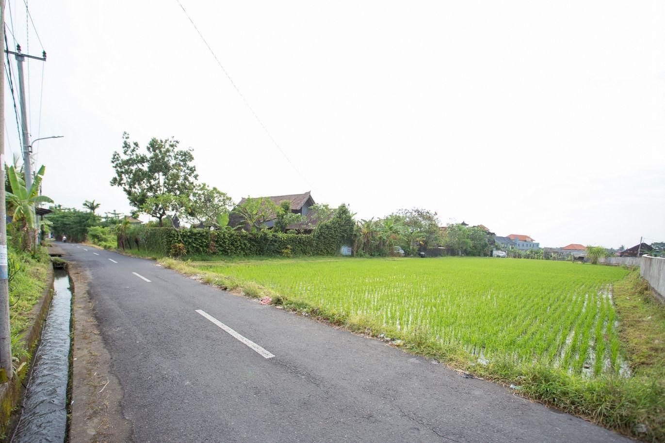 V Canggu Dormitory, Badung
