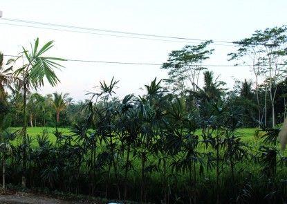 Villa Kemuning Ubud Pemandangan
