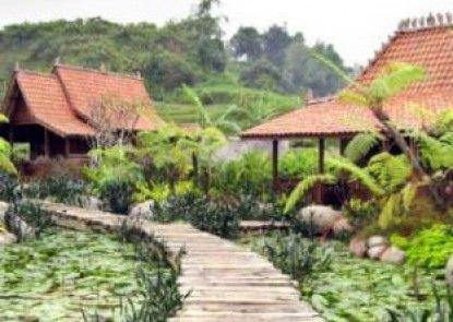 Villa Rumah Kayu Eksterior