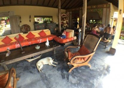 Villa Anjing