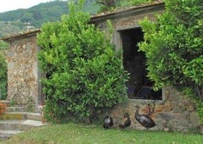 Villa De Thomasis