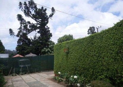 Vista Hilberry
