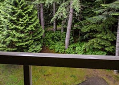 Westwind Properties at The Woodrun Lodge