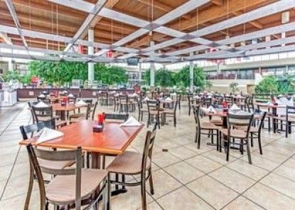 Wyndham Garden Romulus Detroit Metro Airport