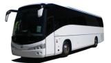 Mercedes Bus 24 Seat